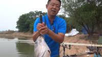 大毛老师游钓赤东湖抛竿上大青精彩的瞬间