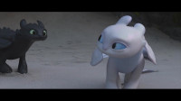 《驯龙高手3》没牙仔收获了爱情,确认过眼神,你是对的龙