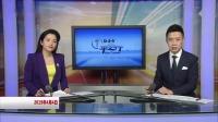 黑龙江甘南:轿车肇事逃逸 警方四小时破案