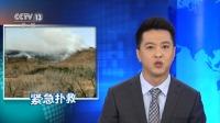 辽宁大连岚崮山突发山火 火势已初步控制