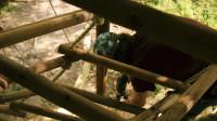 树屋建造第二部分