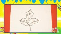 手绘植物花卉简笔画之画枫叶