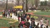清明祭英烈 哀思悼英魂:缅怀革命烈士 传承红色基因