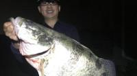 钓友上超大鳜鱼,惊呼这条鱼值钱了