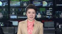 """泰国:现实版""""小飞象""""表演杂耍引争议"""