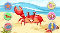 认识螃蟹等海洋小动物