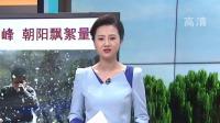 北京飞絮东西城最先迎高峰  朝阳飘絮量大