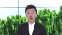 珠峰南坡一小飞机撞直升机3人死亡,事故还造成多人受伤!