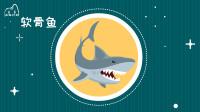 鲨鱼没有鳔怎么浮在水里呢?