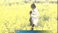 河北安平:农旅融合助推乡村振兴