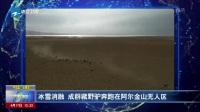 冰雪消融  成群藏野驴奔跑在阿尔金山无人区