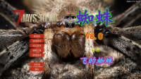 飞的蜘蛛-A17.2MOD蜘蛛V8.0联机-1