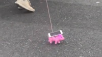 """壮汉上海车展遛""""猪""""引围观 竟是为礼品""""刷步数"""""""