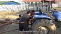 不起眼的铁疙瘩,农村小伙开拖拉机拽着它满院儿跑,干啥呢这是?