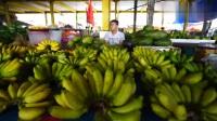 印尼这个位于山顶的恐怖市场,贩卖的居然是蟒蛇和蝙蝠