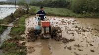 农村大叔开拖拉机打田,姑娘忙着插秧,种田真是辛苦了