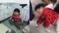 父亲为与前妻斗气将女儿关进笼子拍照 用脚踩脸女孩哭红双眼
