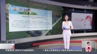 罚款30万元  天津网信办依法对视觉中国网站做出行政处罚