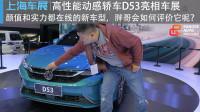 【上海车展】高性能动感轿车D53亮相车展 胖哥会如何评价它呢?