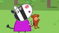 斑马苏怡带着它的小猴子出来玩,这是它最喜欢的玩具