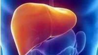 肝脏不好怎么办?肝脏不好会出现这些信号,要多吃这些食物