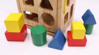彩色小木块放入对应的位置认识色彩