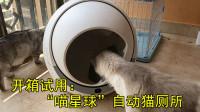 """开箱视频:试用""""喵星球""""自动猫厕所,主子很满意"""