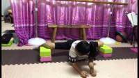 舞蹈基本动作-趴青蛙,这是舞蹈基础动作之一,练习横叉简单方法