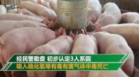猪掉入化粪池,湖南1家3口奋力救猪中毒身亡,悲剧!