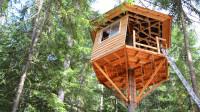 2分25秒教你搭建树屋,实在太完美了,你也可以尝试搭一个!