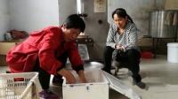 东李镇 张法寺 养牛专业户奶牛场 自动化设施 同恩 传 201904231342