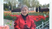 小城故事——春游