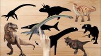 认识好玩的蛇颈龙等8种恐龙
