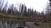 冒险荒野生存钓鱼合集第1集