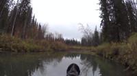 荒野冒险之钓鱼