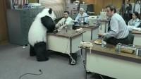 """破例让大熊猫进办公室,结果""""引狼入室"""",饲养员脸色铁青"""
