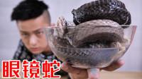 试吃蛇中之王眼镜蛇?把蛇头吃了我会怎么样?