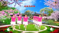 阳光美梅原创广场舞(都说DJ)网红摆胯步子舞-编舞:美梅