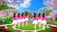 阳光美梅原创广场舞(都说dj)简单32步-背面演示