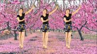 广场舞精选《桃花朵朵开》优美大方,好听好看,简单易学!