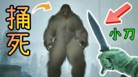 地图更新,用小刀捅死大脚怪※寻找大脚怪( Bigfoot ) 紧张刺激的追踪游戏!