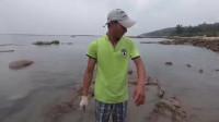 渔民赶海发现海边深水塘,里面藏着一只值钱大货,上前一抓吓一跳!