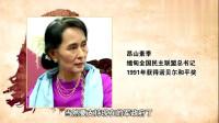 晓说:高晓松讲述亲身去缅甸果敢的经历,跟国内一样,使用人民币!