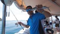 感受大毛老师在泰国的连杆上鱼瞬间