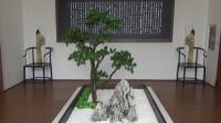 上海植物园第三集《上海盆景博物馆》
