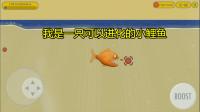 大海解说美味汪洋 小女孩买到一只可以进化的鲤鱼