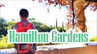 新西兰旅游景点哈密尔顿花园