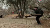 中华传统武术:五行通背拳流传百年,绝不允许有人胡说八道!
