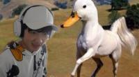 动物混合模拟器,鸭加马会变成什么?