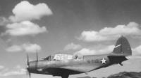 48人乘坐飞机离奇失踪,40年后在无人区被发现,飞机完好无损